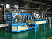 Wrapping Case Packer
